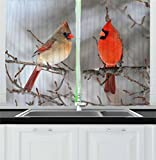 Lunarable Bird Kitchen Curtains, Pair of Northern Cardinal Birds on a Tree Ornithology Avian Wildlife Fauna, Window Drapes 2 Panel Set for Kitchen Cafe, 55 W X 39 L Inches, Vermilion Tan Beige Review
