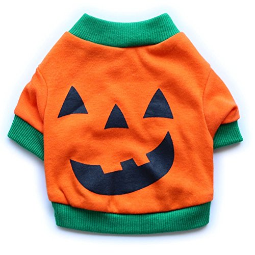 GINBL Pet Halloween Costumes for Small Dogs Shirt Orange Pumpkin White Ghost Costume ()