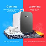 Potek Mini Fridge Cooler and Warmer