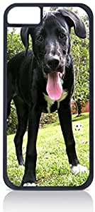 Labrador- Case for the Apple Iphone 5-5s Universal- Hard Black Plastic with Inner Soft Black Rubber Lining-Snap On Case