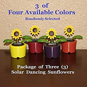 Solar Powered Dancing Sunflower - Package of Three (3) Flowers 56