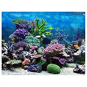 Cartel de Fondo del Acuario Cartel de Tanque de Peces Adhesivo de PVC Arrecife de Coral Bajo Agua Papel de Decoración Calcomanías Adhesivas Socialme-EU(122 ...
