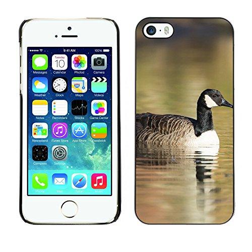 Premio Sottile Slim Cassa Custodia Case Cover Shell // F00031683 canard flottant // Apple iPhone 5 5S 5G