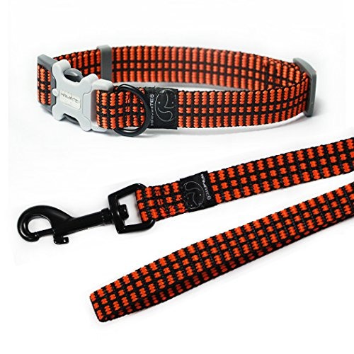 HAMATE Fluorescent Waved Dog Collar and Leash Set (S, - Auburn Boxer
