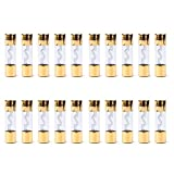 Areyourshop 20Pcs AGU Fuse Car Audio Power Safety Protection Glass Tube Gold Plated 30A