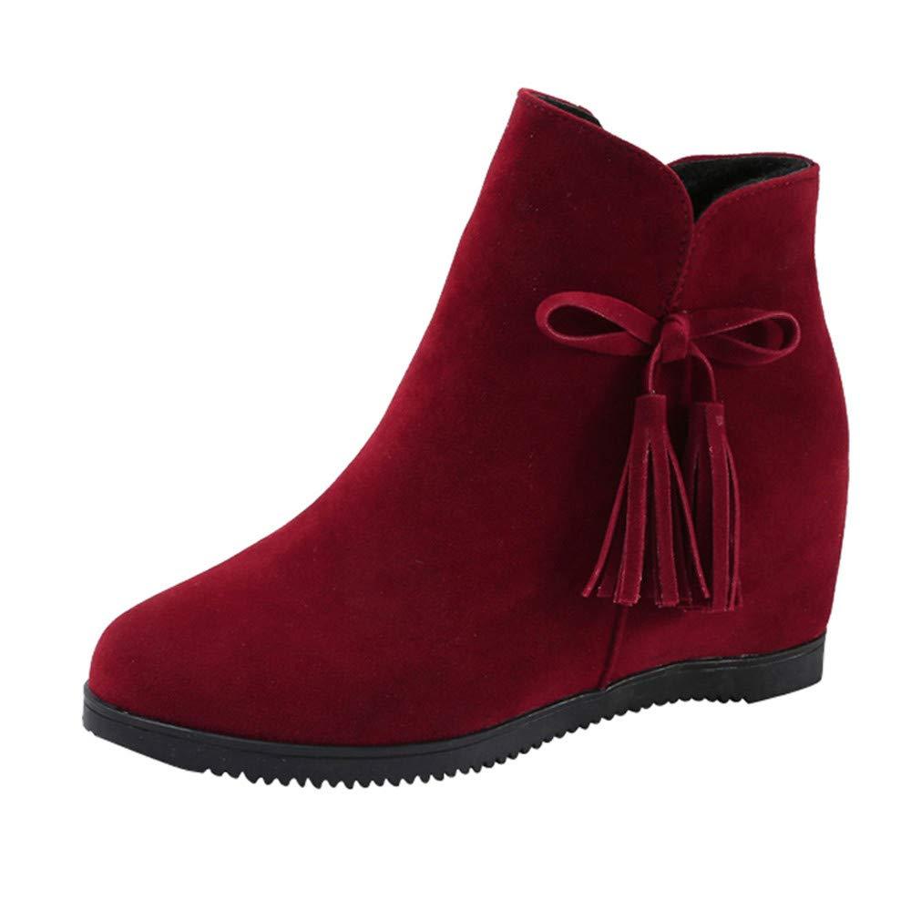 ALIKEEY Mujeres Suede Wedges Cremallera Borla Botas Botines Botines Casual Shoes Martin Trabajo Panter Transpirable