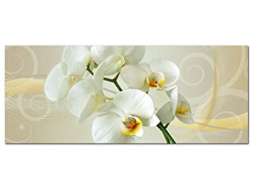 Amazon.de: Graz Design 100010_002_01_04 Wandbild Orchidee | Blumige ...