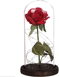 Enchanted Rose Kit, Forever Flower Red Silk Rose LED Light in Glass Cover Dome on Wooden Base, Home/Office Decorations, Romantic Gift for Valentine's Day Anniversary Birthday Wedding Mother Day