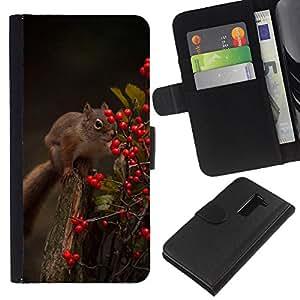 Be-Star la tarjeta de Crédito Slots PU Funda de cuero Monedero caso cubierta de piel Para LG G2 D800 ( Squirrel Forest Berries Animal Nature Green )