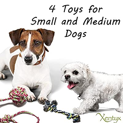 Xentyx - Puppy Dog Pet Toys For Small to Medium Dogs (Set of 4)