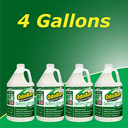 OdoBan Professional Disinfectant and Odor Eliminator Concentrate, 4-Pack, 1 Gallon Each, Original Eucalyptus Scent