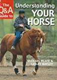 The Q&a Guide to Understanding Your Horse