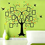 Photo Frames Big Tree Birds Wall Decal Home Sticker PVC Murals Paper House Decoration Wallpaper Living Room Bedroom Art Picture for Kids Teen Senior Adult Baby