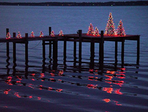 5' Crab Pot Tree w/350 Mini Lights - Clear by Crab Pot Christmas Trees (Image #1)