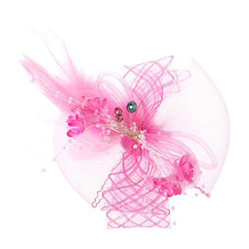 Kofun Hair Clip, Elegant Veil Mesh Tube Feather Fascinator Hat Sweet Flower Derby Rhinestone Clip Powder -
