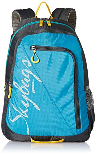 Skybags Groove 05 Blue 25 ltrs Casual Backpack