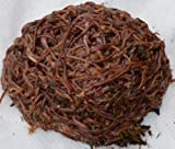 500 Count Red Wiggler Worms Live Composting Worms