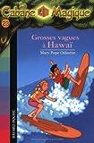 """Afficher """"La Cabane Magique Grosses vagues à Hawaï"""""""