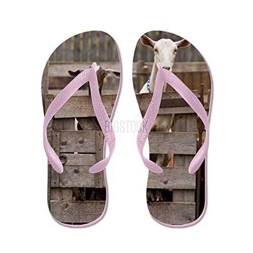 CafePress A Brown and A White Goat Stare Over A T - Flip Flops, Funny Thong Sandals, Beach Sandals