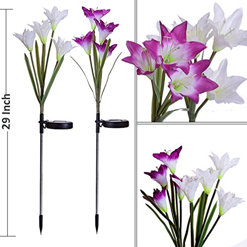 Outdoor-Solar-Garden-Stake-Lights-Doingart-2-Pack-Solar-Powered-Lights-with-8-Lily-Flower-Multi-color-Changing-LED-Solar-Decorative-Lights-for-Garden-Patio-Backyard-Purple-and-White