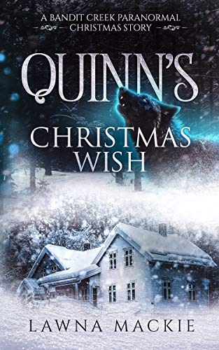 Quinns Christmas Wish (Bandit Creek Book 7)