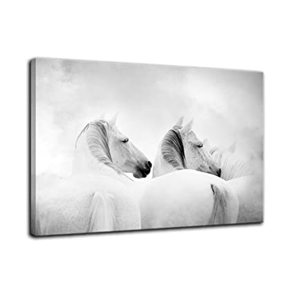 e6b4f43a660 AMEMNY Wall Decor for Living Rooms Two White Horse Modern Wall Art Painting  Canvas Art Home