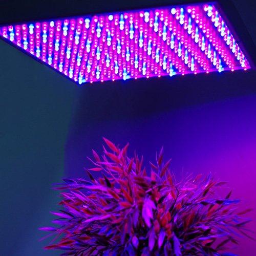 BAODE Pflanzenlampe Wachstumslampe Pflanzenleuchte Rot+Blau 225 LEDs15W 26227B