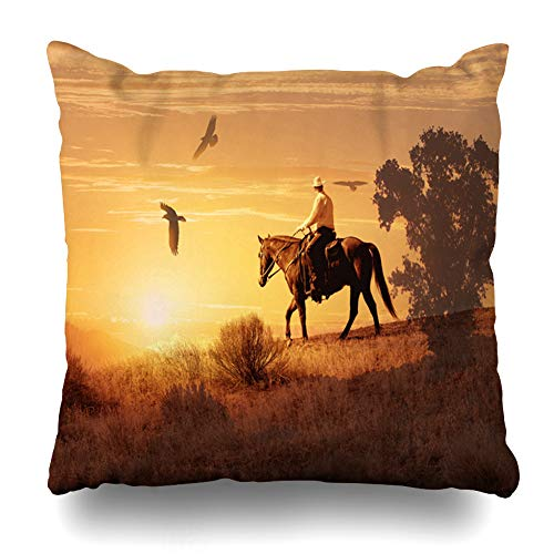 - Ahawoso Throw Pillow Cover Abstract Long Hot Ride Saddle Cowboy Makes in His Way Circle Through Desert Sweltering Sun Crows Decorative Pillowcase Square 16x16 Home Decor Zippered Cushion Case