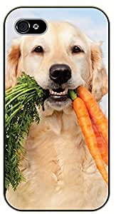 iPhone 4S Labrador and carrots - black plastic case / dog, animals, dogs