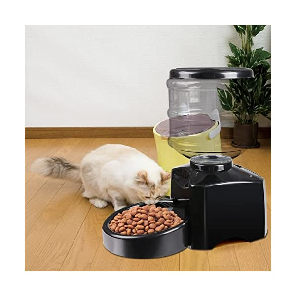 PETCUTE 5.5 Liters LCD Automatic Pet Feeder Dog Feeder Cat Food Dispenser Auto Holiday Dispenser with Voice Recorder Click on image for further info. 7