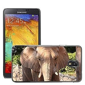 Print Motif Coque de protection Case Cover // M00126518 Cara Elefantes Gris Negro Jefe // Samsung Galaxy Note 3 III N9000 N9002 N9005