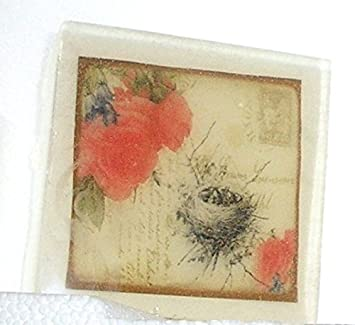 nest and postcards bird Vintage
