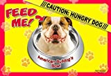 """Best Dog Food For A American Bull Dogs - American Bulldog 17"""" x 11-1/2"""" 2-Sided Placemat / Review"""