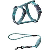 Lollimeow Pet Cat Harness with Leash Set, Puppy Dog Adjustable Collar Leash Escape Proof (Small, Green)