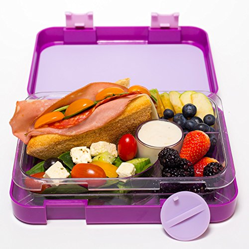 bento lunch box purple by mmm lunch buddies double leak. Black Bedroom Furniture Sets. Home Design Ideas
