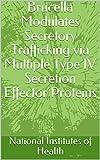 Brucella Modulates Secretory Trafficking via