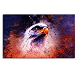 Bazaar 50X75CM Owl Modern Art Painting Abstract Print Picture Kit Wall Home Decor No Frame