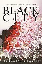 Black City (A Black City Novel) by Elizabeth Richards (2013-05-07)