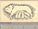 Sow and Piglets Rubber Stamp, Nursing Pig Farrow