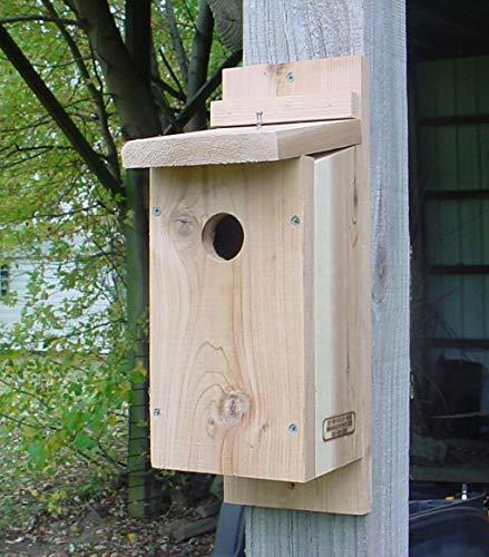 Bird Houses by Mark Downy Woodpecker House
