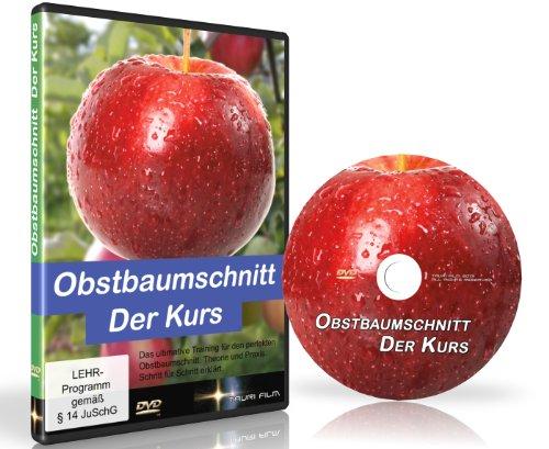 Obstbaumschnitt Der Kurs