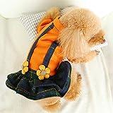 zeoqo Pet Dog Clothes for Autumn and Winter
