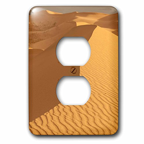 3dRose Danita Delimont - Deserts - Sand Dunes. Gobi Desert. Mongolia. - Light Switch Covers - 2 plug outlet cover - Els Outlet