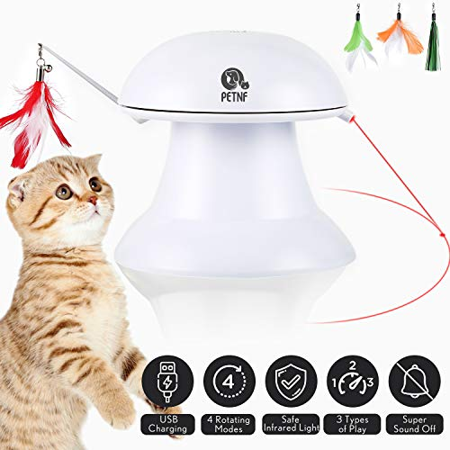 petnf Upgraded is the best Cat Laser Toy? Our review at cattime.com uncovers all pros and cons.