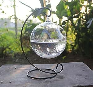 sunwon® Colgante Cristal Transparente Redondo Tanque De Peces Flores Planta Colgante Jarrón hidropónico decoración del hogar Botella con un soporte de hierro