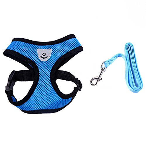 Charming House Mesh Dog/Cat Pet Harness and Leash Set with Padded Vest (Blue, Size M)