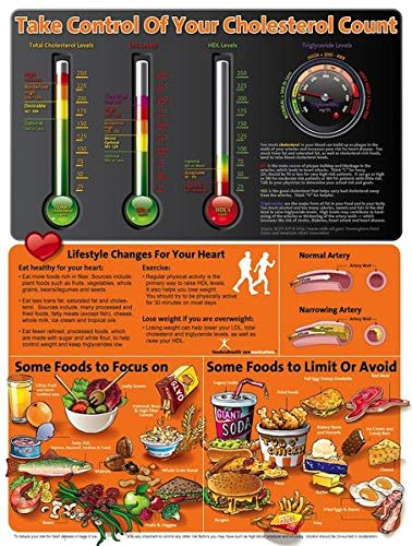 About Your Cholesterol Poster 18'' x 24'' Laminated by Nutrition Education Store