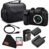 Panasonic Lumix DC-GH5S Mirrorless Micro Four Thirds Digital Camera DC-GH5S - Silver level Bundle- International Version (No Warranty)