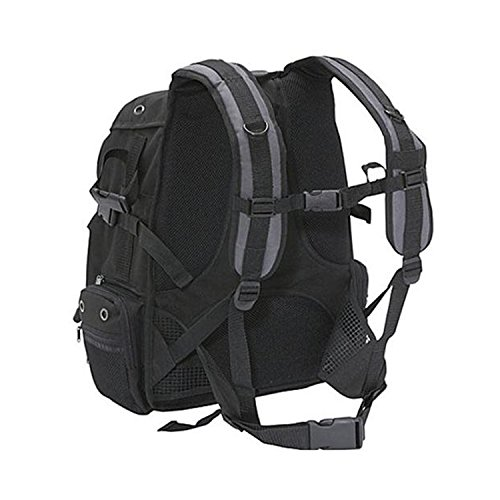 Ape Case, ACPRO2000, Large backpack, Laptop compartment, Padded, Rain cover included, Adjustable straps, Camera Backpack, Equipment bag, Black (ACPRO2000) by Ape Case (Image #3)