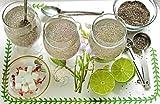 1 LB Basil Seeds (Preservative Free, Raw & Fresh) Tulsi Seeds, Tukmaria, Tukh Balanga/Malanga, Sabja